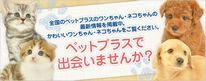 PetPlus(ペットプラス)